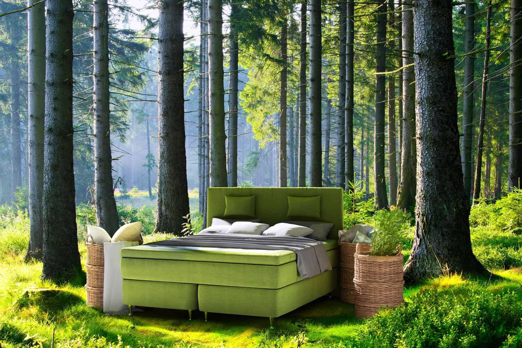 PRESSURE Ecolife Beds